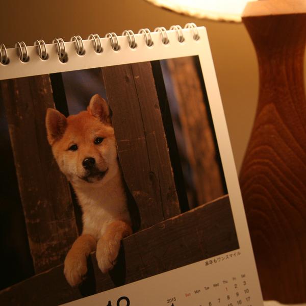 柴犬カレンダー パート2