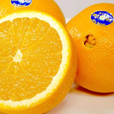 オレンジ 高糖度限定。