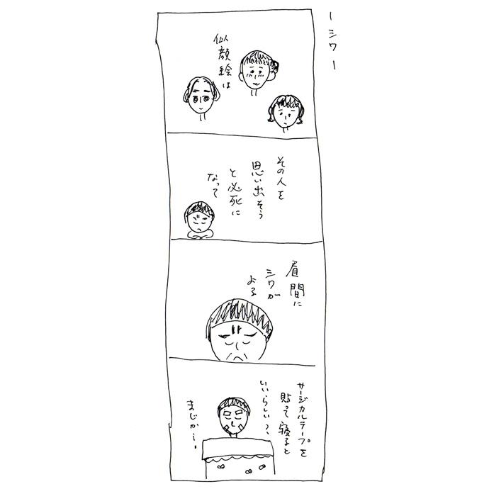 【さとしの観察日誌】シワ