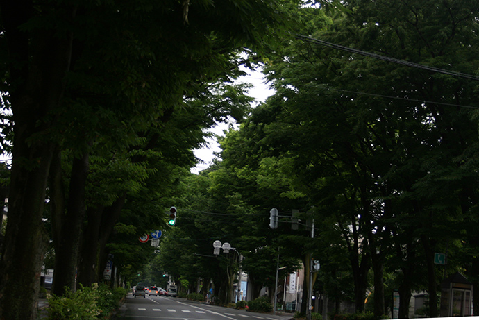 diary_yama_0628.jpg